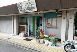【桜山の北欧風 隠れ家カフェ】Cafe Moi(カフェ モイ)のおしゃれモーニング