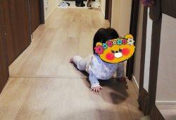 【今日の我が家】はじめてのハイハイ!